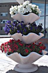 Вазоны,  фонтаны