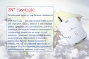 Шлюз аналоговый 2N EasyGate (501303E)