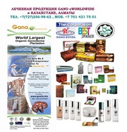 Приглашаем мусульман поддержать халал бизнес в Казахстане
