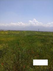 Продам земельный участок 5 соток ЛПХ