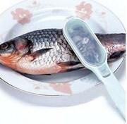 Нож для чистки рыбы код 43015