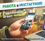 Рекламный агент в соц сетях в проект