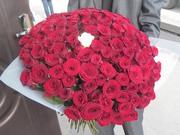 101 роза красного цвета высота 60 см
