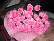 55 розовых роз 50 см
