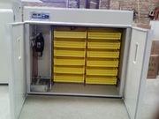 Инкубаторы 2в1 шкаф инкубационо-выводной. Гарантия