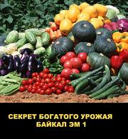 Байкал ЭМ-1  ускоритель роста,  продам
