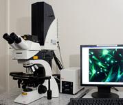 Микроскопы  LEICA
