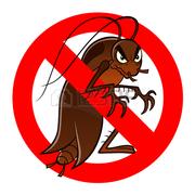 Уничтожение тараканов в Алматы и Алматинской области